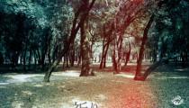 INORI_FLYER_OMOTE_IMAGE